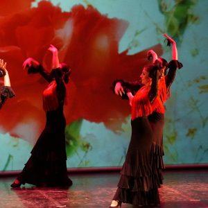 Flamenco Iniciación. ¡Nuevo grupo para el curso 2018-2019!