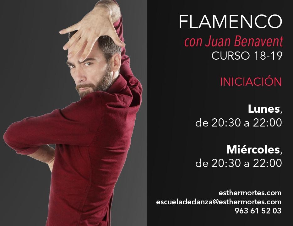 Flamenco Iniciación Juan Benavent
